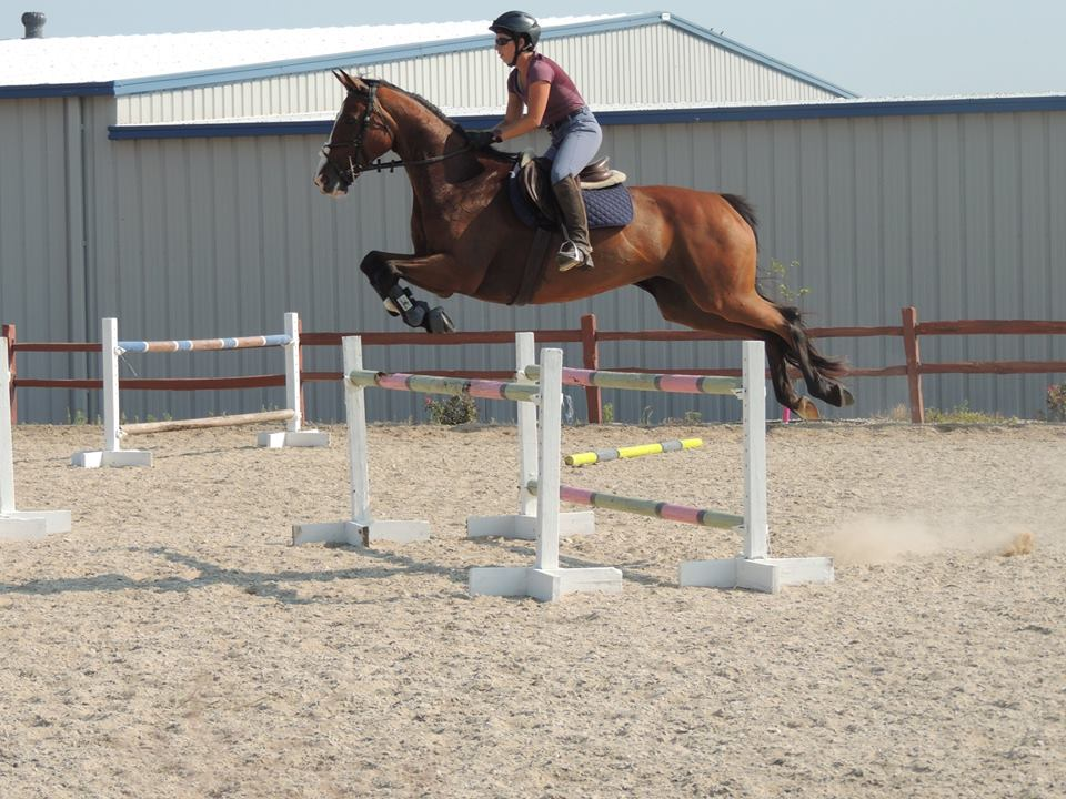 Kahleesi and Lauren jumping a large oxer at a jumping clinic.
